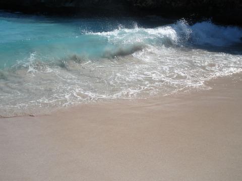 surf-101286