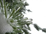 winter-216557_1280